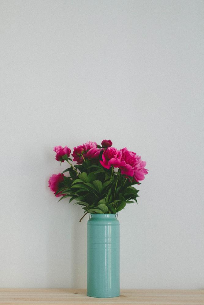 Camelias-5-small