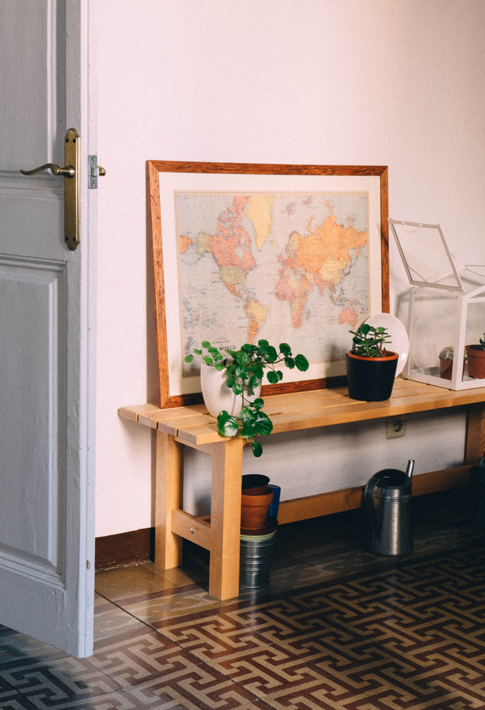 plants_at_home_small
